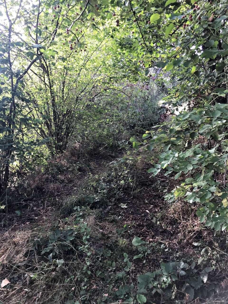 Enquête publique unique relative à l'aliénation des trois chemins ruraux: chemin de la Buriche, Chemin traversant la propriété de Mr et Mme Th
