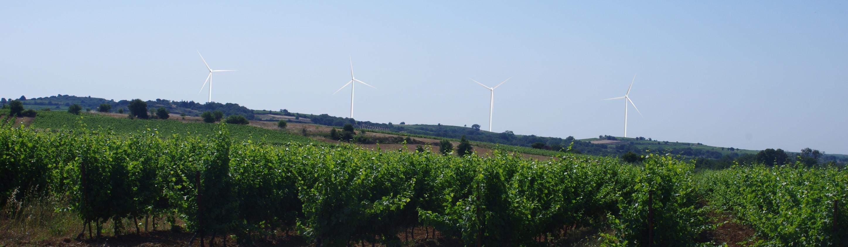 Ferme Éolienne de Puissalicon