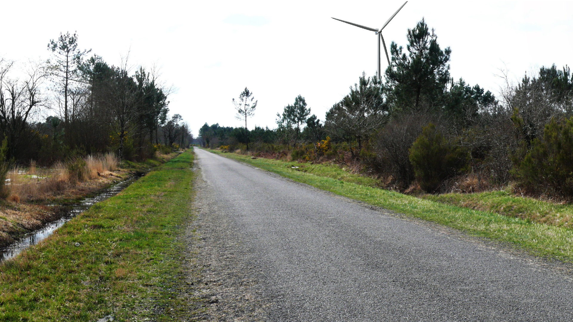 Projet de de parc éolien de Lesparre